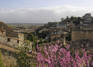 pretty in pink: St.Emilion